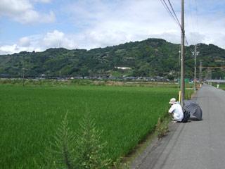 Asabata20070722_2
